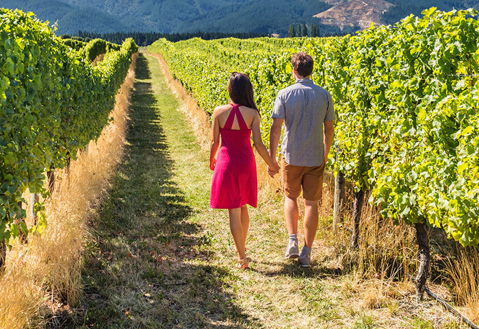 Couple walking through a vineyard in Chestertown, MD