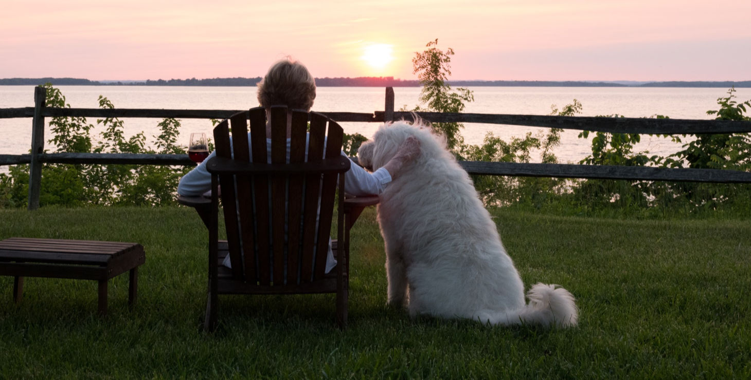 Owner and dog enjoying a Maryland sunset
